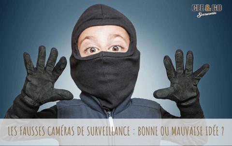 Les fausses caméras de surveillance : bonne ou mauvaise idée ?