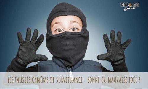 fausse camera de surveillance